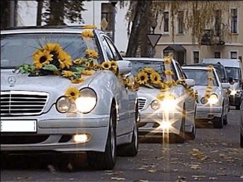 Аренда свадебного картежа – важная деталь вашего торжества
