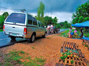 Шри-Ланка: путешествие на автомобиле