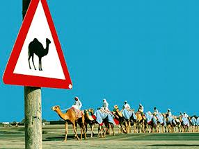 Путешествие по Египту на арендованном авто. Стоит ли рисковать?
